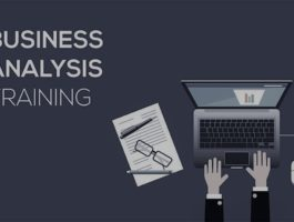 Business Analysis (Practical Approach)